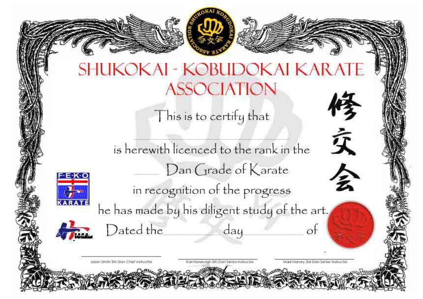 international dragon association